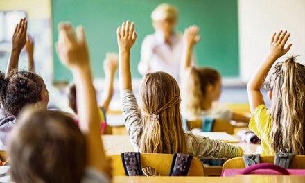 Buena acogida a Verano Educativo