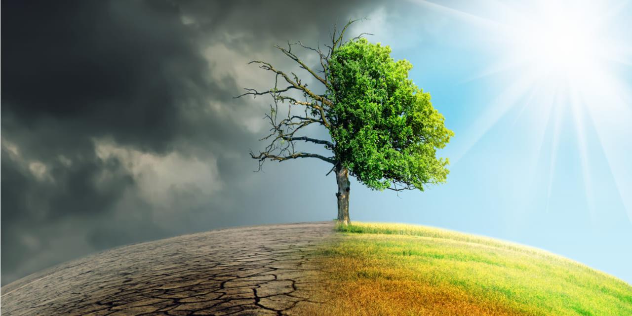Médicos del mundo teme que cambio climático genere otra catástrofe sanitaria