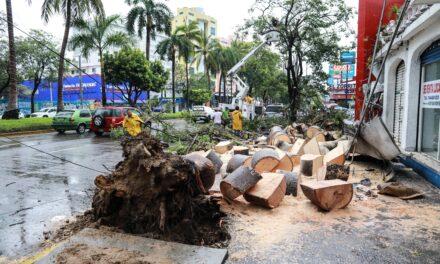 Nace la tormenta tropical Dolores en el Pacífico mexicano