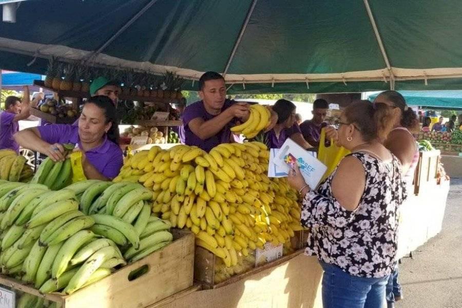 Acuerdan ampliar mercados familiares a los 78 municipios de Puerto Rico