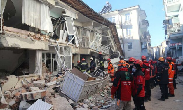 Al menos 29 muertos por el terremoto de magnitud 7.2 en Haití