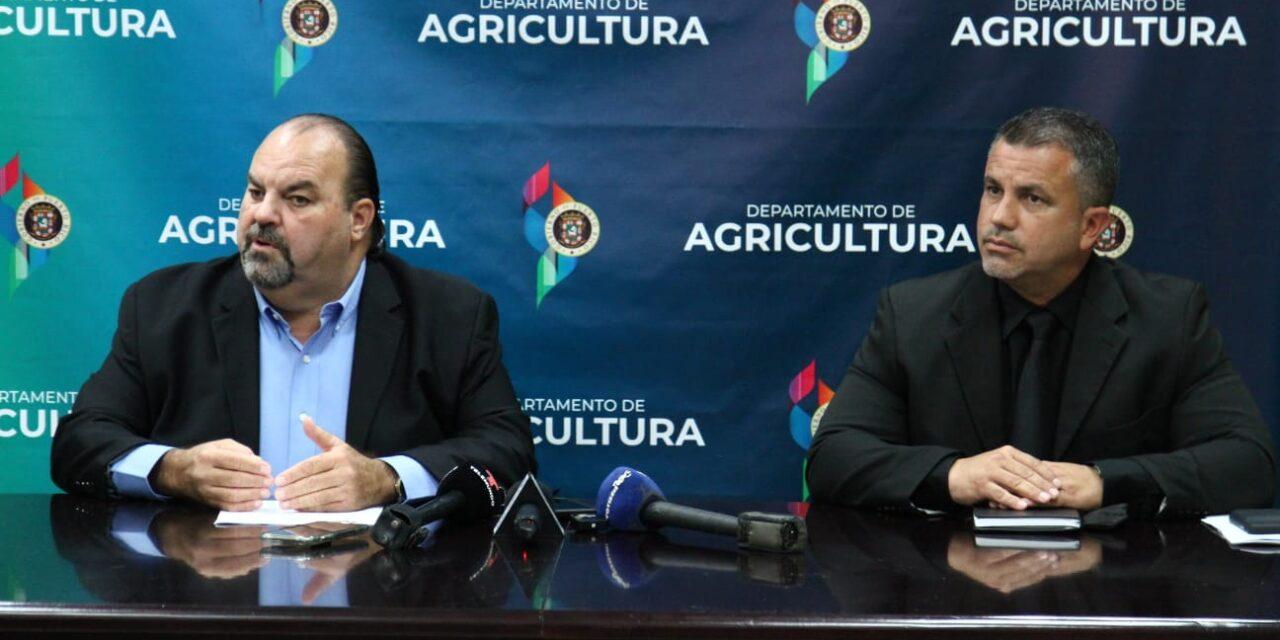 Agricultura anuncia subsidio salarial para Patronos